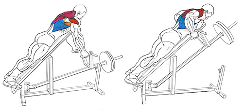 техника тяги Т-грифа на наклонной скамье