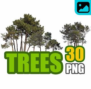 تحميل أشجار png