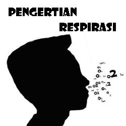 Pengertian Respirasi