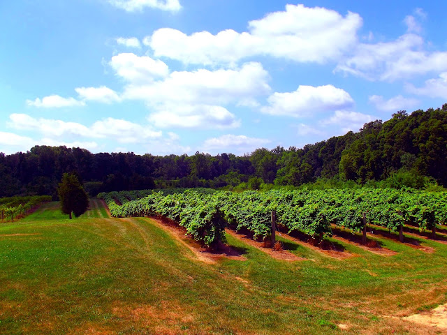 Ertle's Winery - Indiana State Road 129 - Batesville Indiana
