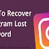 How Do I Reset My Instagram Password