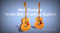 Neil Young - Taylor 855 12-string