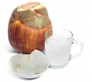 Manfaat Dari Buah Lontar Untuk Kesehatan Tubuh, khasiat dari buah lontar bagi kesehatan tubuh