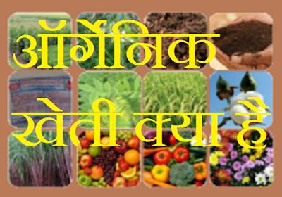 ऑर्गेनिक खेती क्या है ऑर्गेनिक खेती की जानकारी - Organic farming jankari in hindi
