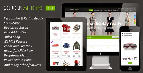 best premium shopify theme