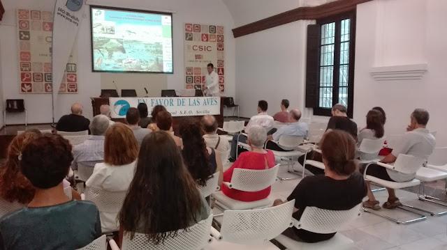 Conferencia: Custodia litoral. Conservación y turismo ornitológico en la Bahía de Cádiz. Por Juan Martín Bermúdez, 4 de Octubre 2016. Grupo Local SEO-Sevilla.