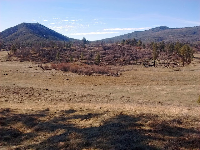 From Stonewall Mine looking south across the meadow