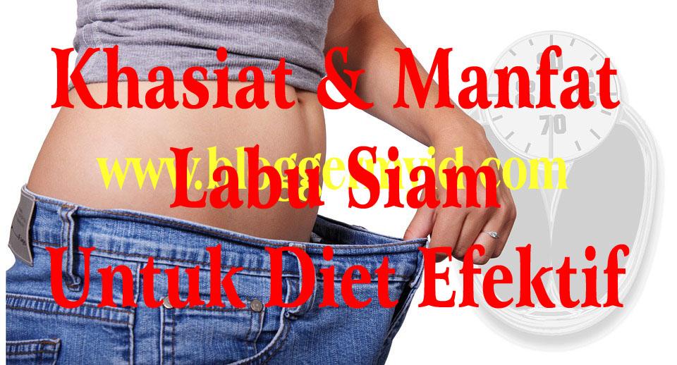 Rahasia Manfaat Labu Siam Untuk Diet Berat Badan