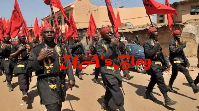 "BREAKING!!! ""Buhari will be defeated"" – Shiites Declares"