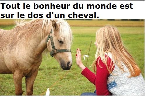 cheval arabe proverbe