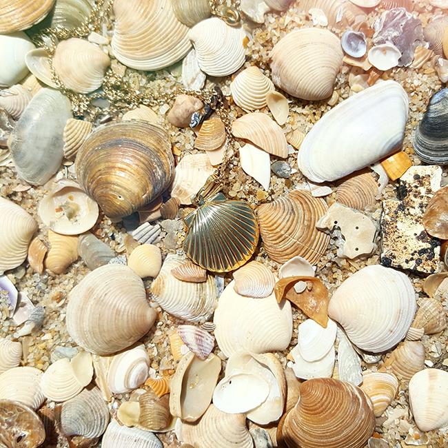 gold, necklace, seashells, beach, strand, Muscheln, Halskette
