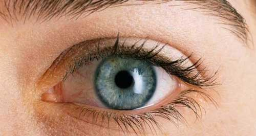 6 Jenis Mata Manusia (Emetropi, Miopi, Hipermetropi, Presbiopi, Astigmatisme dan Buta Warna)