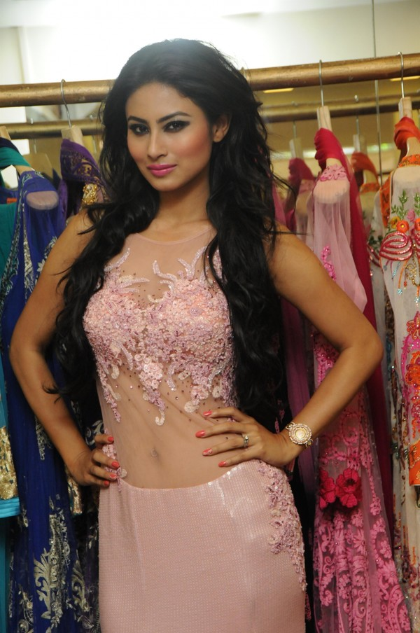 Rohit roy and mona singh dating 9