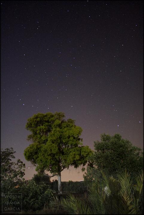 fotografia,noche,estrellas,fuente_alamo,naturaleza,cielo,paisaje