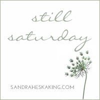 http://sandraheskaking.com/2015/07/still-saturday-being/