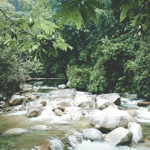 Mandi Manda di Sungai Pertak.