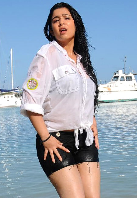 Charmy Kaur Hot Imageswallpaperphotos 2016  Indian -1867