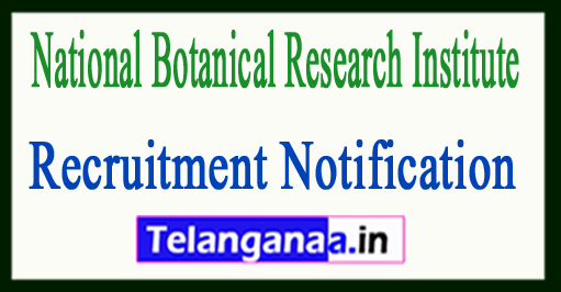 National Botanical Research Institute NBRI Lucknow Recruitment Notification