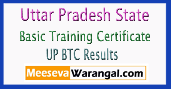 UP BTC Uttar Pradesh Basic Training Certificate 4th Semester Results 2017