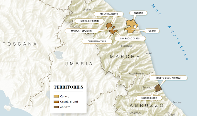 Umani Ronchi wines of Abruzzo and Le Marche