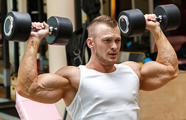 Muscle Routine Programs