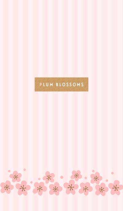 plum blossoms-pink-japan
