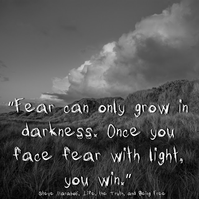 Fear can only grow in darkness. Once you face fear with light, you win.  Steve Maraboli, Life, the Truth, and Being Free