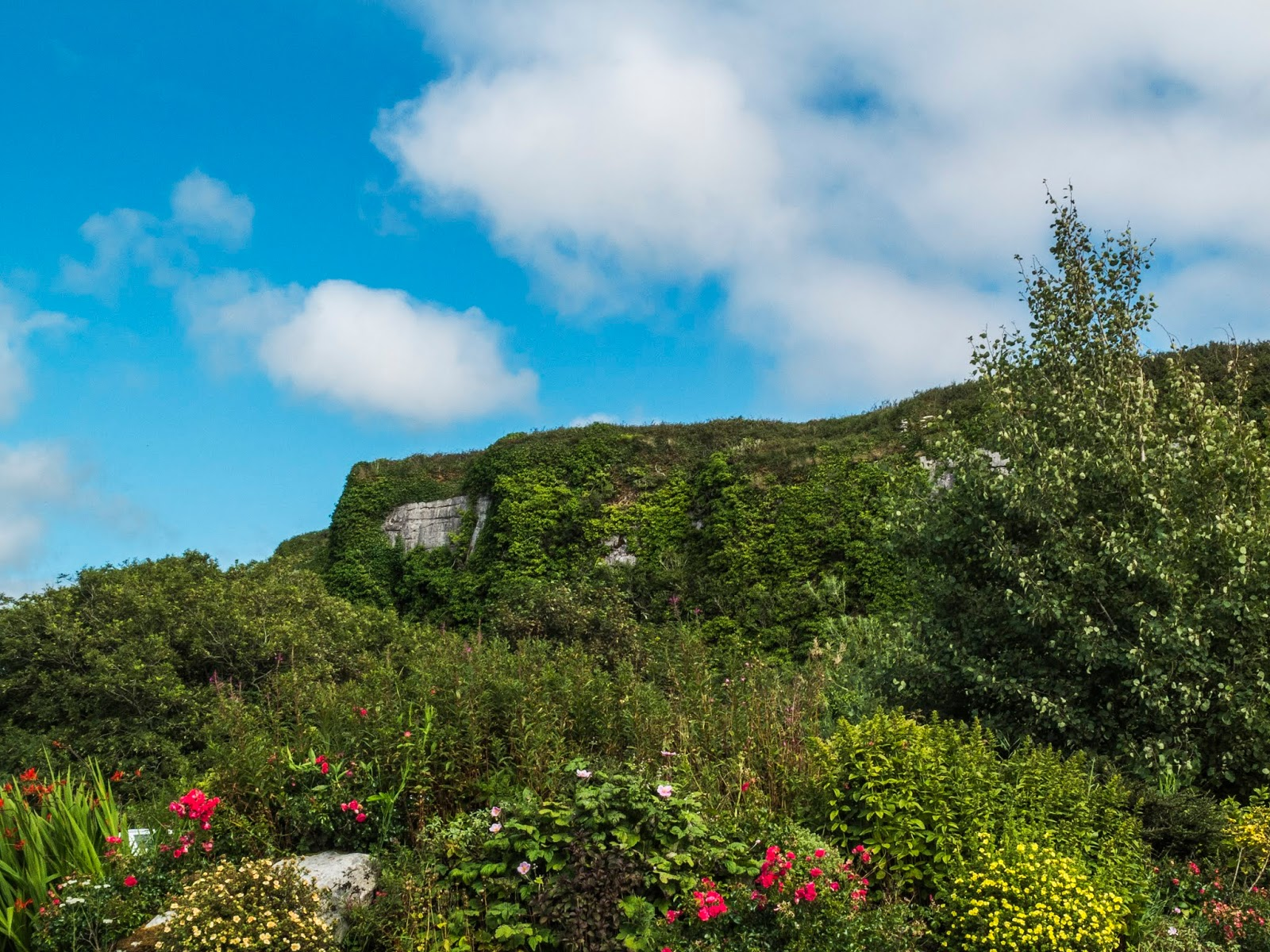 Limestone rock of the Doolin Cave, Co.Clare pictured on a sunny day.