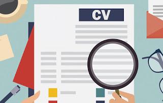 Inilah Deretan Kesalahan Menyusun CV yang Sering Dilakukan