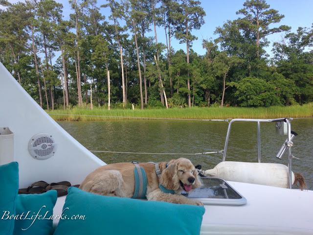 Sailing north on the ICW, South Carolina