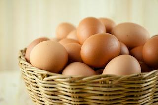 Usaha mahasiswa jual beli telur ayam