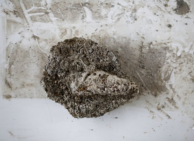 Investigación tac Pompeya