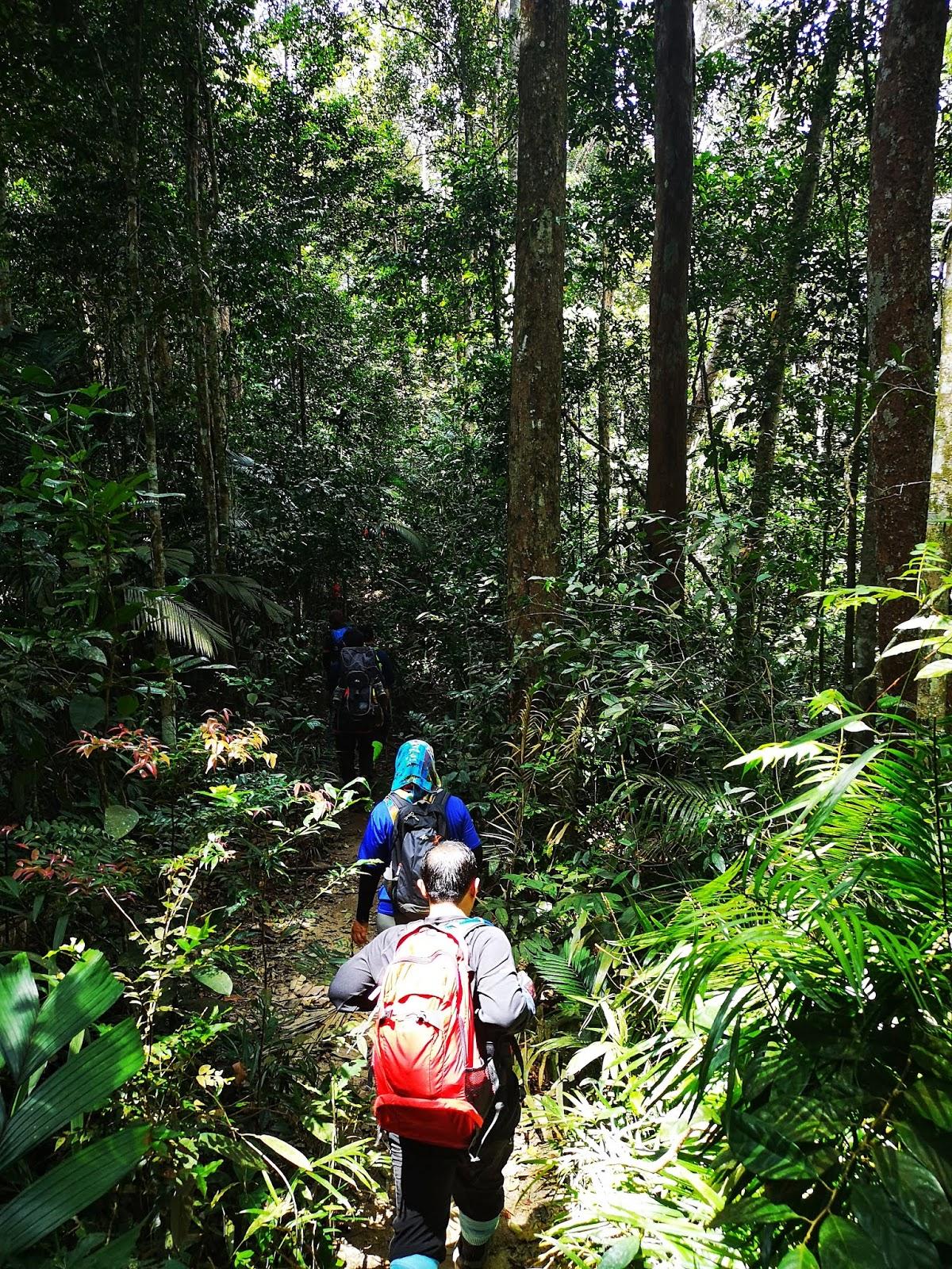 Menuju Gua Kambing, Gunung Berembun 2