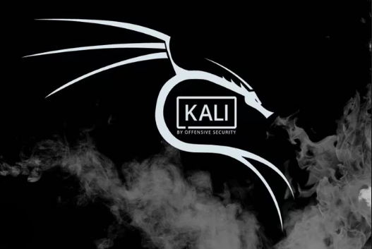 Kali Linux Iso Latest Update 2019 এর Download Link সাথে ছোট্ট রিভিউ 20