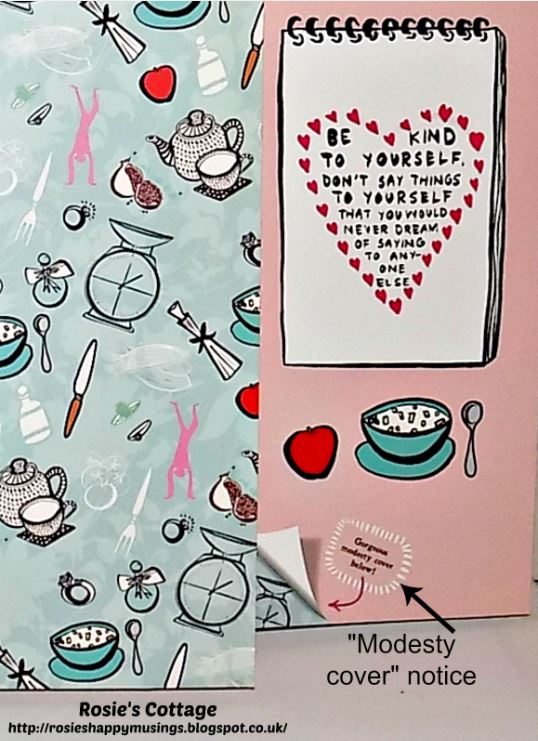 Diet Doodle Diary modesty cover notice
