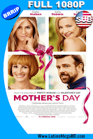 Dia de las Madres (2016) Subtitulado Full HD 1080P - 2016