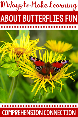 Celebrate spring with a unit on butterflies! This post includes a collection of teaching ideas and resources to make your planning easy. You'll find book lists, free activities, video links, and more.