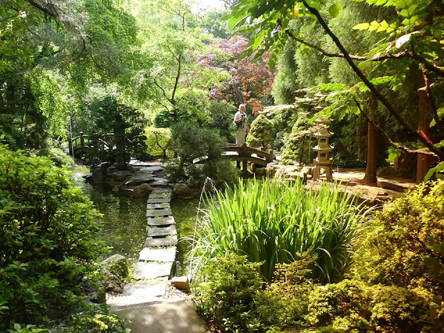 The Japanese Garden at Hillwood - my favourite spot