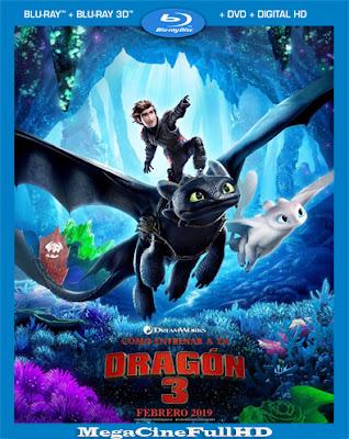 Como Entrenar A Tu Dragon 3 (2019)