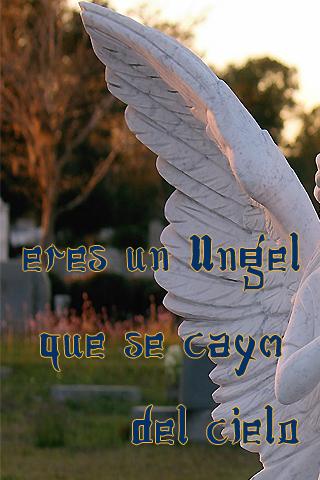 Eres un ángel que se cayó del cielo