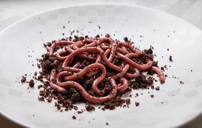 robaki na ziemi