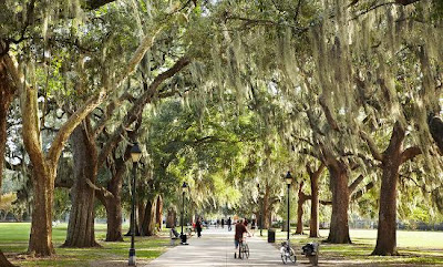Tempat Wisata di Savannah, Georgia
