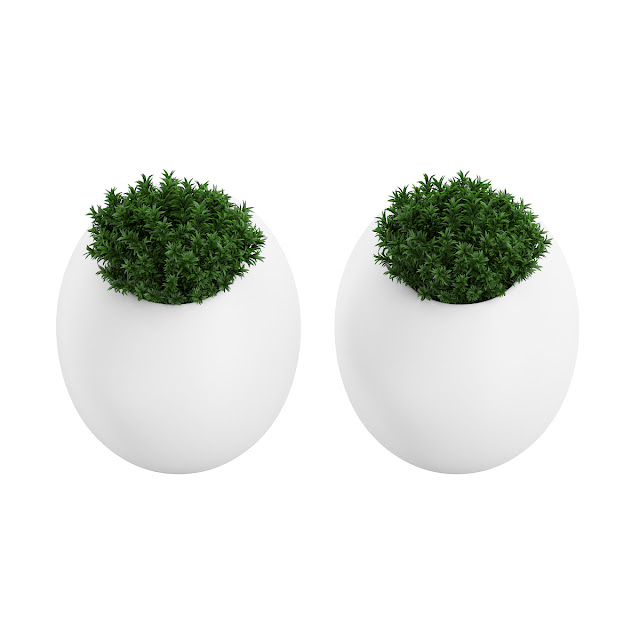 3D model free -  Plants_09