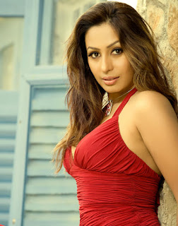 Kashmira Profile Family Biography Age Biodata Husband Photos