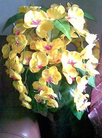 Anggrek  Besar 1 lusin Bunga  Plastik Eksotis