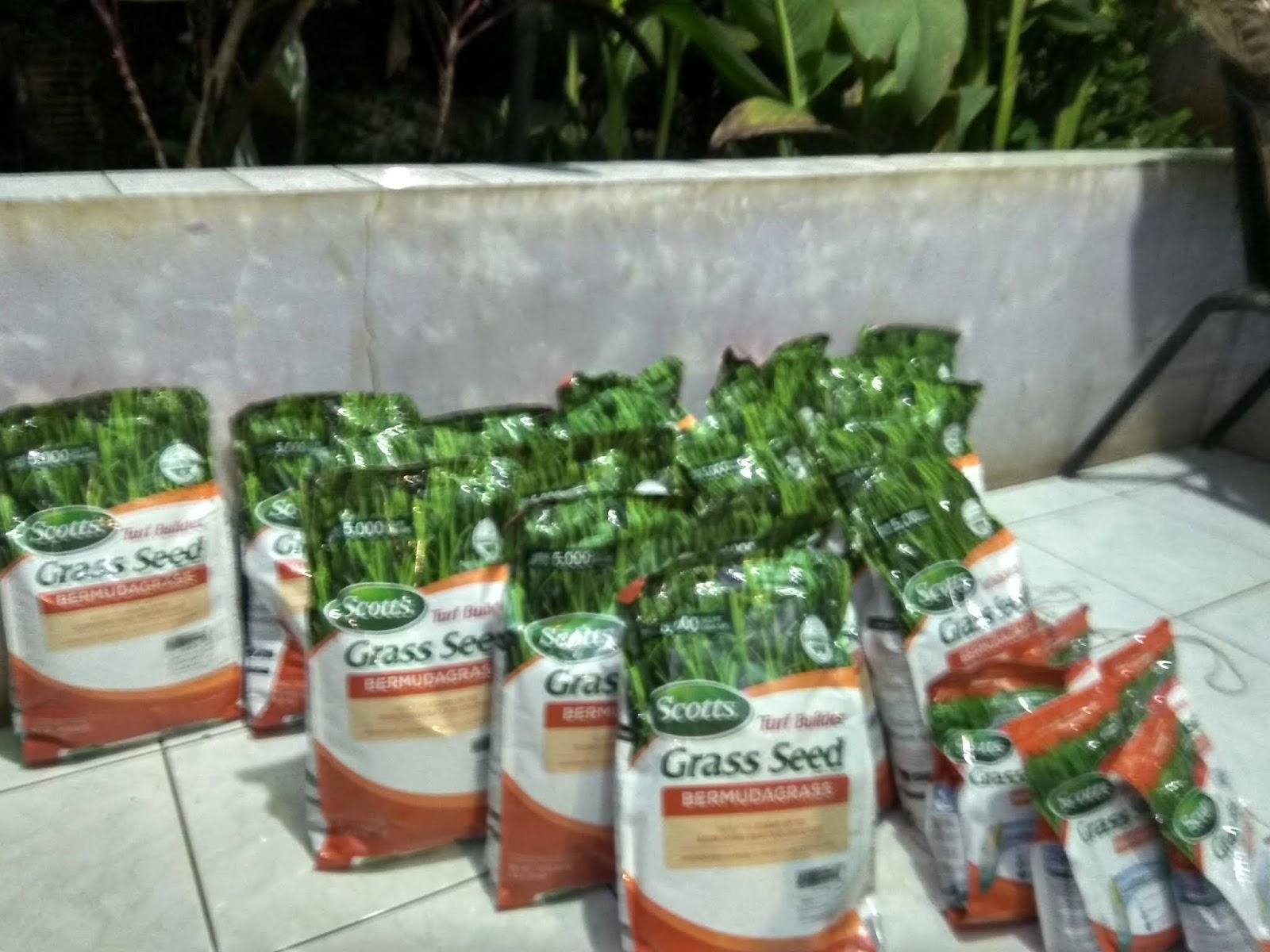 Supplier Benih Rumput Biji Grass Seed Jual Scotts