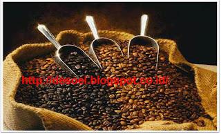 Pencarian terkait Insfirasi Usaha Cafe Kopi dan Refernsi Harga Kopi n Soft Drink: warung kopi okezone, warung kopi sederhana, warung kopi unik, warung kopi tradisional, menu warung kopi, warung kopi mp3, warung kopi dki, warung kopi cantik, racikan kopi hitam, racikan kopi warkop, racikan kopi tradisional, racikan kopi enak kumpulan tips, racikan kopi terbaik, racikan kopi kapal api, resep racikan kopi yang enak, racikan kopi hitam nikmat, resep minuman soda biru, resep minuman dari soda sprite, cara membuat air soda tawar, cara membuat minuman bersoda sprite, resep minuman mocktail, resep minuman cafe modern, resep minuman cafe praktis, resep minuman segar bersoda, jual biji kopi mentah,spesial mix, luwak, luak,  supplier kopi, jual biji kopi arabika, distributor biji kopi, tempat jual biji kopi di jakarta, jual kopi bubuk, jual kopi bubuk kiloan, jual biji kopi sangrai, racikan kopi warkop, racikan kopi hitam, racikan kopi enak kumpulan tips, resep kopi hitam, racikan kopi tradisional, resep kopi cafe, resep kopi cappucino, racikan kopi kapal api,Citra Karya Coffe & Soft Drink (NAGETAN), Harga Coffe, Arabica Aceh Rp. 6.700, Arabika Toraja Rp. 6.700, Robusta Java Rp. 6.100, Robusta Sidikalang Rp. 6.100, Soft Drink Milk Shake Avocado   Rp. 6.100, Banana Rp. 6.100, Red Velvet Rp. 6.200, Matcha Green Tea Latte Rp. 6.500, Choco Green Tea Rp. 6.200, Choco Hazelnut Rp. 6.100, Chocolate Rp. 6.100, Choco Mint Rp. 6.200, Vanilla Rp. 6.100, Taro Rp. 6.200, kedai tjikini, tempat nongkrong murah di jakarta barat, tempat ngopi murah di jakarta,tempat ngopi di jakarta barat, tempat ngopi di jakarta pusat, giyanti coffee roastery, koultoura coffee, anomali coffee.daerah: Jawa Barat, Jawa Tengah, Jawa Timur, Sumatera, Kalimantan, Riau, Balikpapan, Dki Jakarta, Bandung.