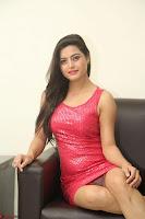 Shipra Gaur in Pink Short Micro Mini Tight Dress ~  Exclusive 004.JPG