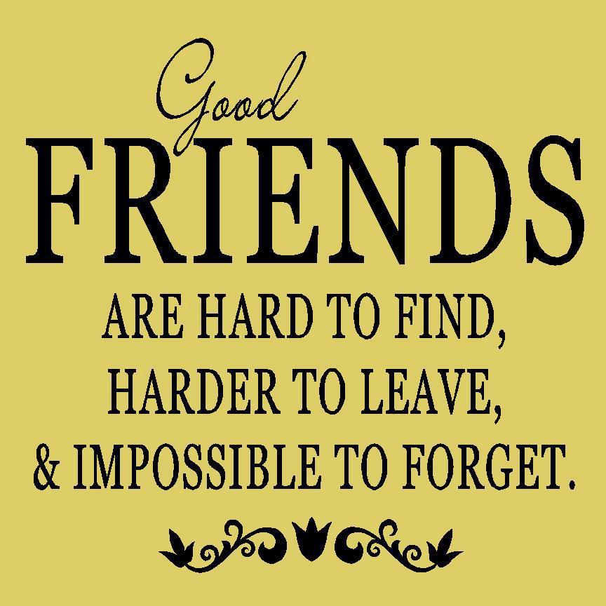 Good Friends Are Hard To Find Harder To Leave & Impossible