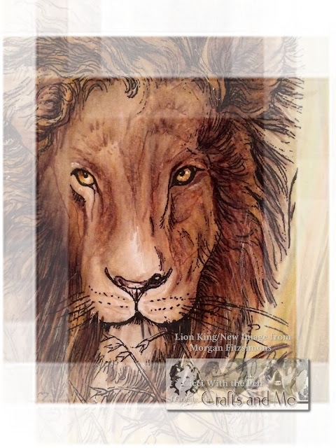 New Image Lion King Morgan Fitzsimons In the Store Today